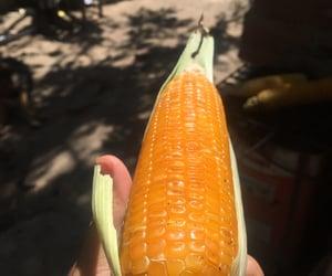 corn, food, and photography image