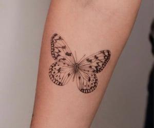art, butterfly, and tatuaje image