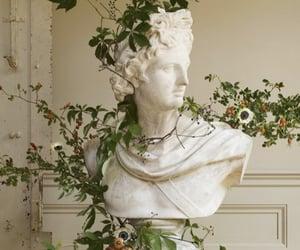 aesthetic, art, and plants image