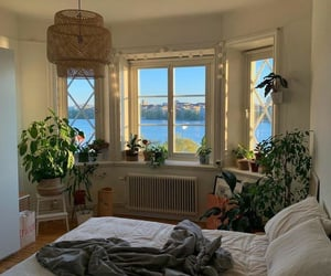 plants, interior, and bedroom image