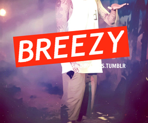 breezy and swag image