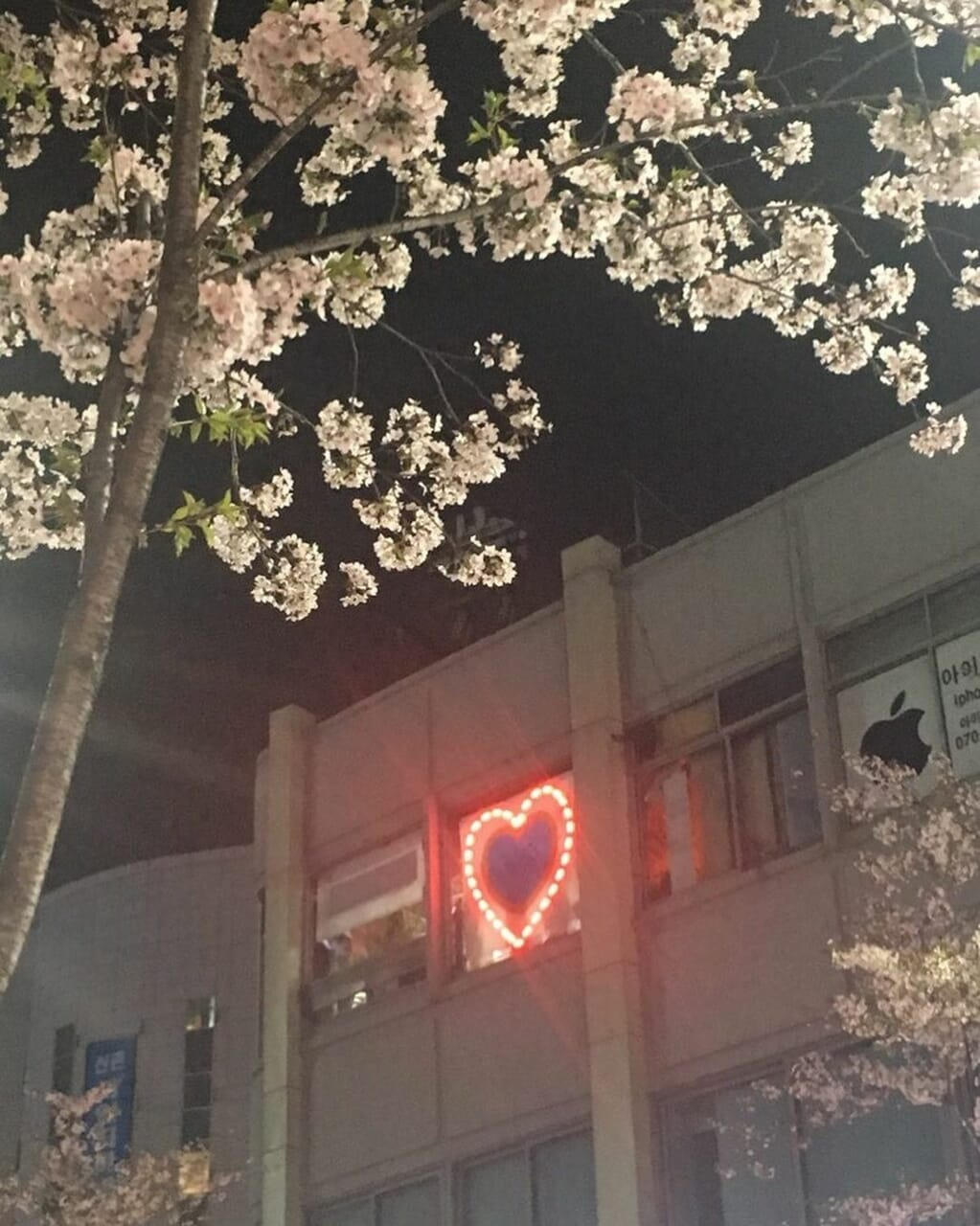 aesthetic, heart, and flowers image