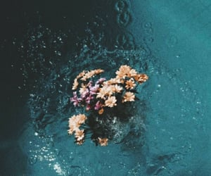 flowers, water, and wallpaper image