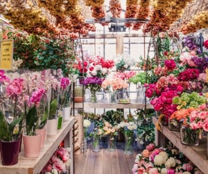 amazing, april, and floral image