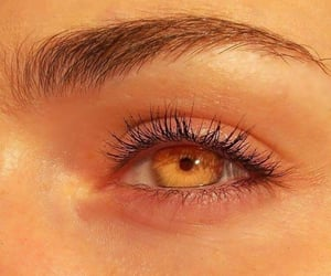 aesthetic, eyes, and sunlight image