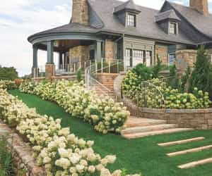 garden, house, and architecture image
