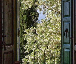 door, nature, and aesthetic image