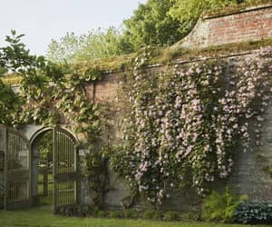 The exquisite private gardens of Petworth Househttps://www.houseandgarden.co.uk/