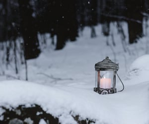 candle, dark, and forest image