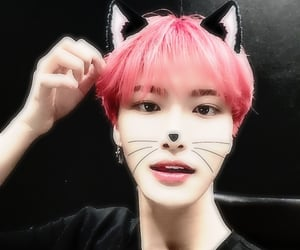 blurry, grunge, and catboy image