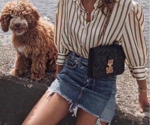 fashion, dog, and girl image