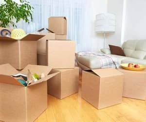 packing & moving services image