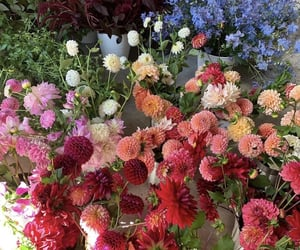 flowers, garden, and heartcore image