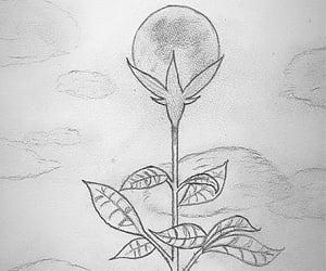 dessin, lune, and fleur image