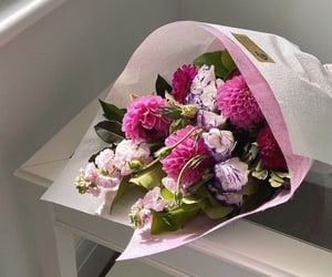 bouquet, plant, and flowers image