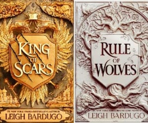 books, reading, and king of scars image