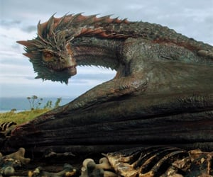 dragon, a song of ice and fire, and targaryen image