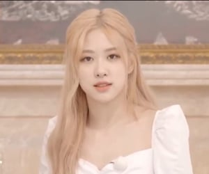 rose, lq, and low quality image