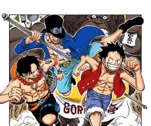 portgas d ace, sabo, and one piece manga image