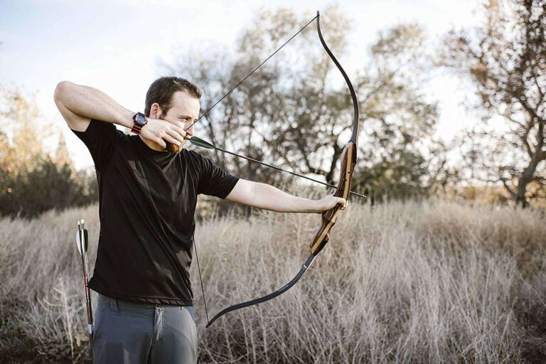 article and best recurve bows image