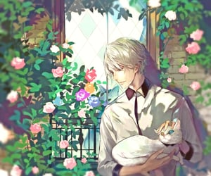 cat, peaceful, and white hair image