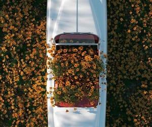 aesthetic, car, and fashion image
