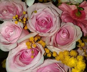 flowers, pink, and iloveit image