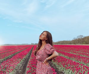 dress, happy, and tulips image
