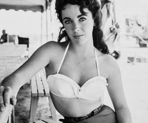 belleza, elegancia, and Elizabeth Taylor image