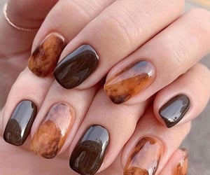 brown, nails, and beauty image