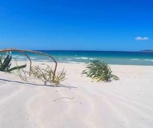 beach, italia, and italy image