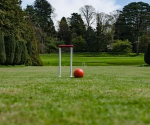 croquet, grass, and plant image