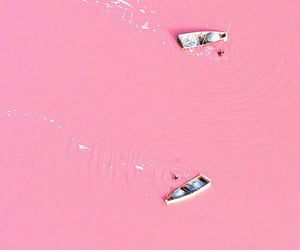 photography, aesthetic, and pink image