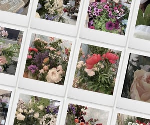 flowers, aesthetic, and flower image