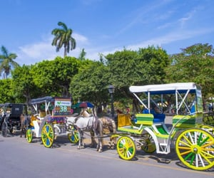 horse drawn carriages and nikaragua image