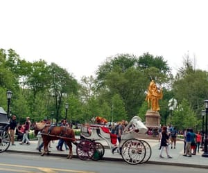 ny and horse drawn carriages image
