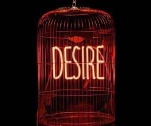 desire, cage, and neon image
