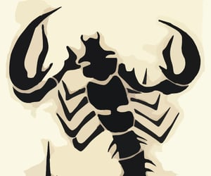 scorpion, svg, and vector image
