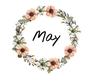 inspiration, may, and quotes image