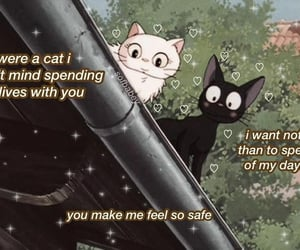 cat, cute, and wholesomememe image