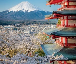 beautiful, japan, and travel image