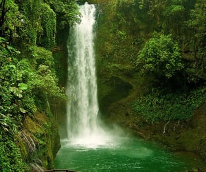 waterfall, green, and nature image
