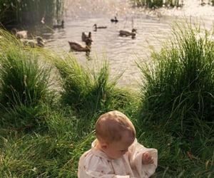 adorable, nature, and baby image