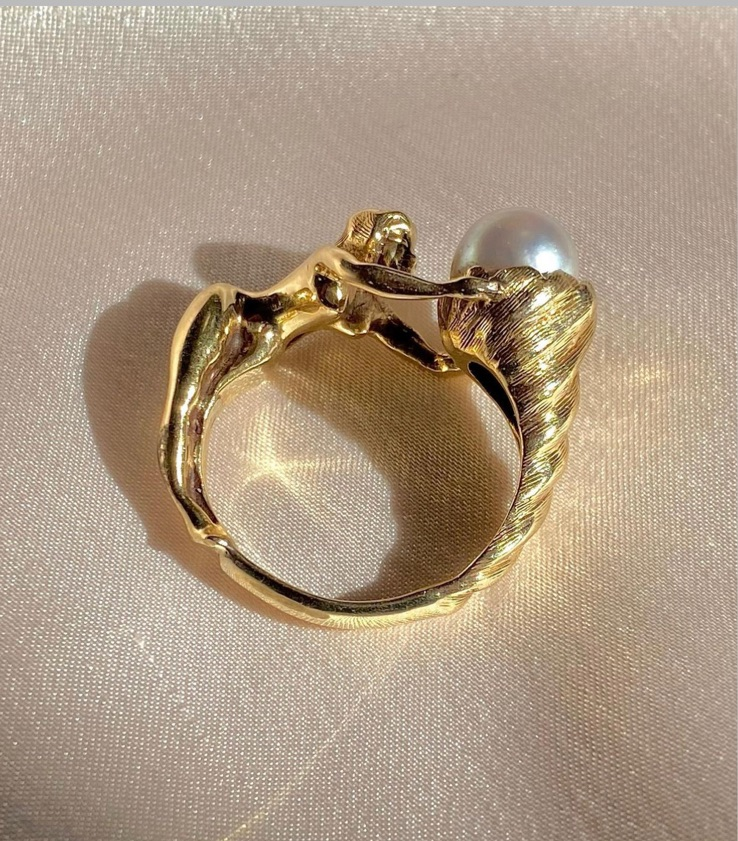 conch, gold, and ring image