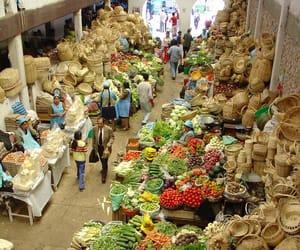 Bolivia, travel, and city image