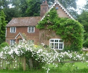 aesthetic, cottage, and flowers image