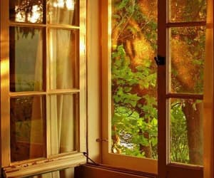 window, nature, and summer image
