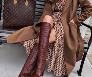 gucci, luxury, and LV image