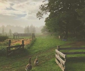 countryside, goals, and vintage image