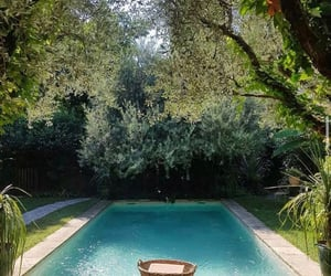 pool, green, and nature image